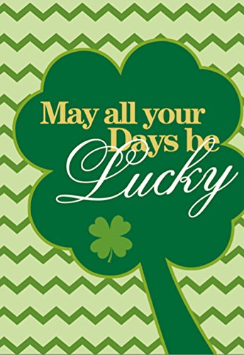 Morigins Lucky Clovers Double-Sided Decorative St. Patrick's Day House Flag 28''x40'' by Morigins