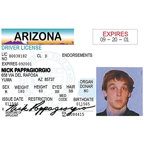 Signs 4 Fun Nidpg Nick Pappageorgio's Driver's License]()