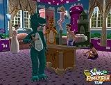 The Sims 2: Family Fun Stuff - PC