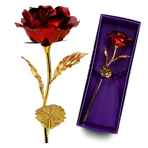 Valentines Gifts for Wife or Girlfriends,24K Gold Foil Handcrafted Forever Rose Flower,Christmas Wedding Mothers Day Anniversary Gift(Red)