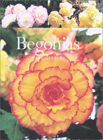 Begonias Plant Tuberous (Begonias)