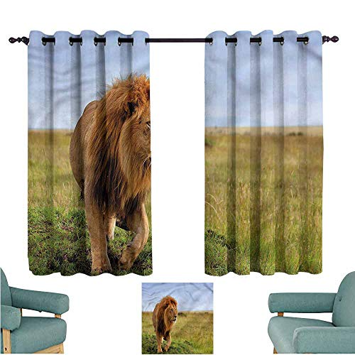 - Blackout Curtains Panels Lion Animal on Masai Mara Kenya Insulated with Grommet Curtains for Bedroom W63x72L
