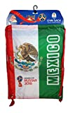 FIFA Official Russia 2018 World Cup Official Licensed Cinch Bag 02-1