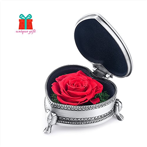 Christmas Gifts For Women, hey June Preserved Flower Rose, Antique Jewelry Box, Unique Gift for Women, Her, Sister, Girls, Aunt, Mother's Day, Birthday, Anniversary, Wedding (Red Heart-shaped) Unique Gifts For Girlfriend Birthday