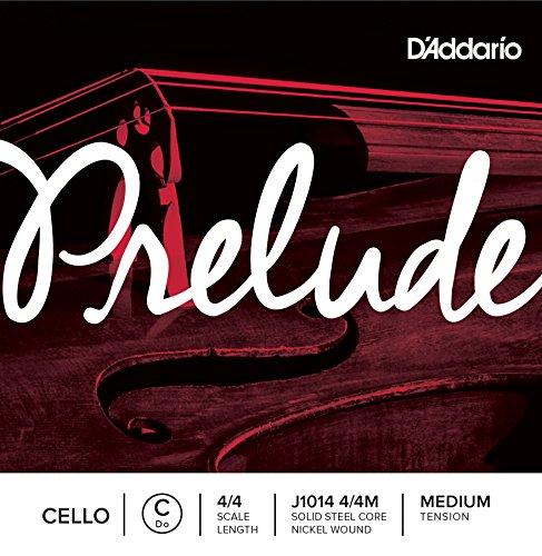 d addario prelude - 7