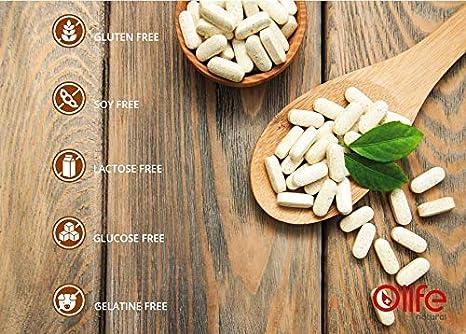 Amazon.com: GASTRYZYME, Enzimas digestivas de alta calidad ...