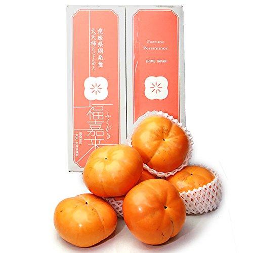 愛媛県産『太天柿』