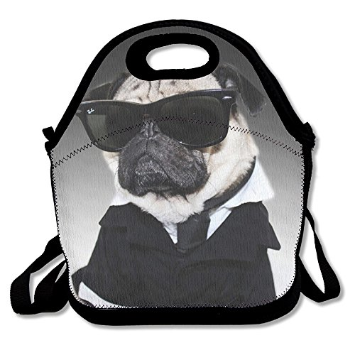 Cool Pug Reusable Insulated Lunch Bag School Picnic Thermal Carrying Gourmet Lunchbox Lunch Tote Container Organizer For Women,Teens,Adults-Lunch Boxes For Outdoors,Work, Office, Schoo