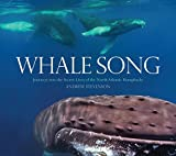 Whale Song: Journeys into the Secret Lives of the North Atlantic Humpbacks by Andrew Stevenson (2011-11-22)