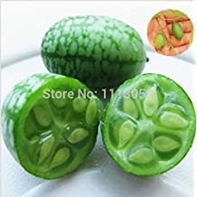 20seeds/bag Vegetables And Fruit Mini Watermelon Seeds Taste Like Cucumbers Plants For Home Garden Bonsai watch