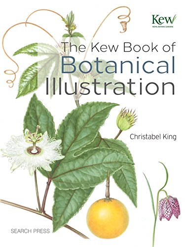 The Kew Book of Botanical Illustration [Christabel King] (Tapa Dura)