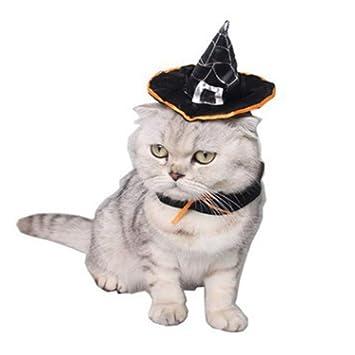 Perro de Mascota Gafas de Sol Disfraz de Halloween Gato Ropa ...