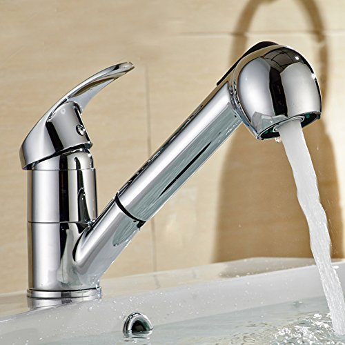 Water Ridge Seaton Pull Out Kitchen Faucet