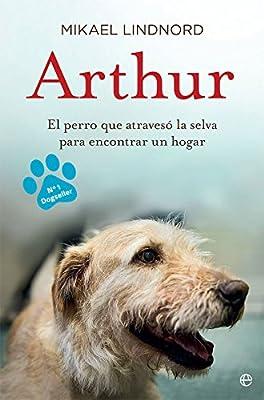 Arthur : el perro que atravesó la jungla para encontrar un hogar