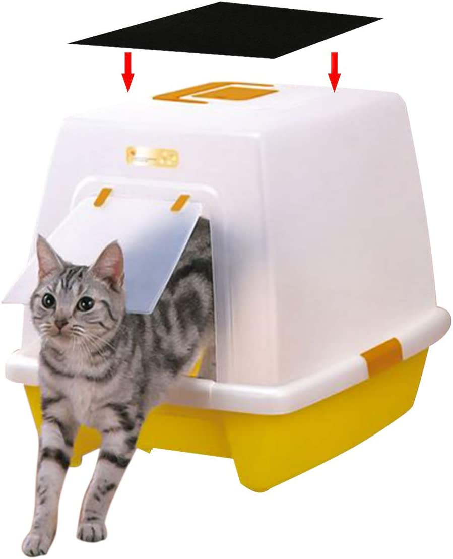 NATUCE 4 Piezas Filtros de Carbono de Forma Cuadrado de Cajas para Gatos, Filtros de Repuesto para Cajas de Arena para Gatos para Control de Olores: Amazon.es: Productos para mascotas