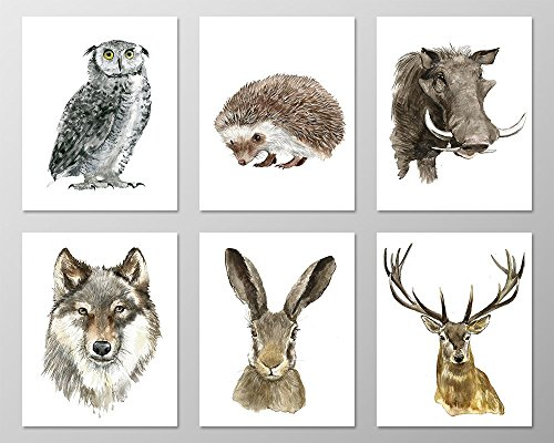 Forest animals nursery #A072 - Set of 6 Animal art prints .F