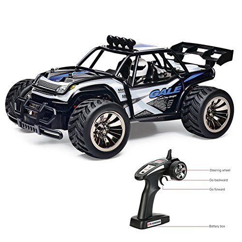 Tecesy RC Cars 1/16 Electric Off Road Truck Big Feet Car 2.4Ghz Radio Remote Control Car Fast Racing RC Buggy (Blue) RTR 2WD 15km/h Best Choice for Children and RC Beginner
