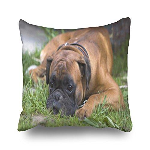 Custom Puppy Boxer Sleeping Green Ground Series Bulldog Floral Design Pillowcase Home Decorative Sofa Decor Square 18 x 18 Inches Pillow Cushion Case (Cotton Heavyweight Boxers)