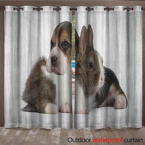 BlountDecor Beagle Grommet Curtain Panel Pets Rabbit and Puppy Animal Kingdom Friendship Best Companions Bunny PictureW120 x L96 Taupe Black White