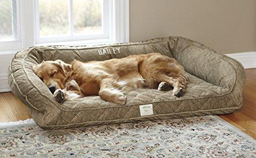 Deep Dish Dog Bed For Senior Dogs Webnuggetz Com