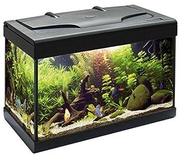CD Acuario Aloha 40 - Acuario de Cristal Completo de Tapa plastico, Sistema de iluminación, Filtro biológico y Bomba de Navidad: Amazon.es: Hogar