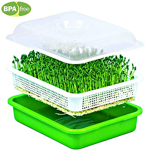$12.99 Seed Sprouter Wheatgrass Sprouting Tray BPA Free PP Sprouting Kit Big Capacity with Lid 13.4 x 9.84 x 4.2inch 2019