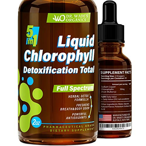 Liquid Chlorophyll for Total Detox - MAX Absorption - Pure Vegan Chlorophyllin - Made in USA - Helps with Bad Breath - Powerful Antioxidant with Anti-Aging Effect - Chlorophyll Drops for Weight Loss