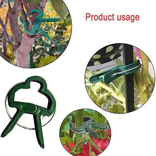 NIAN Pflanzenstützclips für den Garten, Orchideenstielclips Wiederverwendbar zum Stützen von Stielen oder Richten von Pflanzenreben Tool-2-Größen (40)