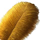 MELADY Pack of 50pcs Natural Ostrich Feathers 12-14inch(30-35cm) for Home Wedding Party Decoration (Gold)