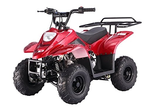 TAO TAO Model # ATA Boulder B1 Kids 4 Wheeler 110cc ATV comes 90% Assembled - ALL COLORS AVAILABLE