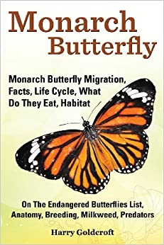 Monarch Butterfly, Monarch Butterfly Migration, Facts, Life Cycle ...