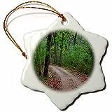 3dRose Danita Delimont - Roads - India. Sal forest at Kanha tiger reserve. - 3 inch Snowflake Porcelain Ornament (orn_276816_1)