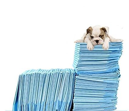 ZLL/ Pañales para perros y animal doméstico perro pículas pañales/absorción de agua fuentes