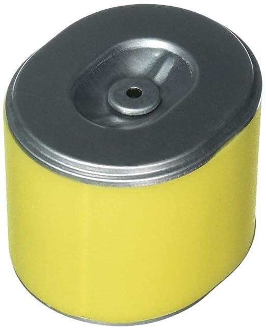 Oregon 69 - 007 Blister cortacésped filtros de Aire: Amazon.es: Jardín