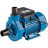 Clarke ECP15A1 1. 5' Electric Centrifugal Pump (230V) - 7120400