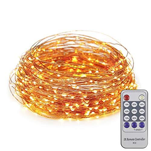 ER CHEN 165ft Led String Lights,500 Led Starry Lights on 50m Copper Wire String Lights + 12V DC Power Adapter(Warm White) ()