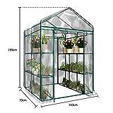Portable Plant Gardening Walk-in Greenhouse,PVC
