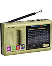 Multi-Function Wireless Radio FM/AM/SW Multi-Band Radio Portable Bluetooth Speaker MP3 Player can be Operated by Rechargeable Lithium Battery/3 AA Batteries Support TF Card/U Disk (Gold)