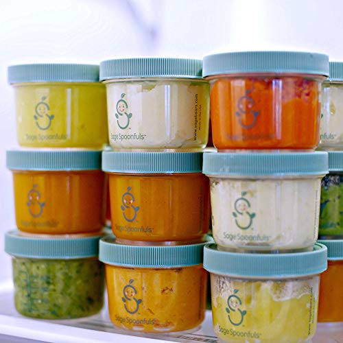 Buy homemade baby food storage