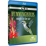 Nature: Hummingbirds [Blu-ray]