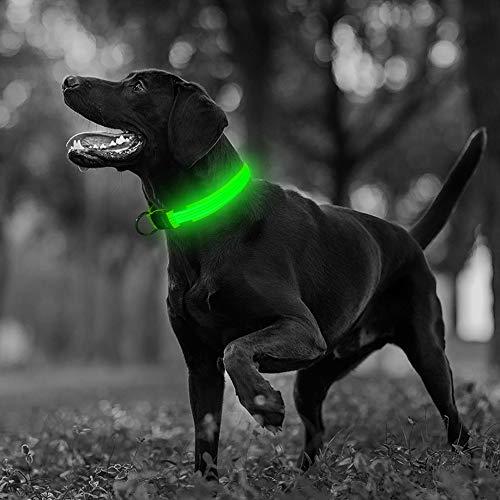 Illumifun LED Dog Collar, USB Rechargeable Light Up Dog Collars, Nylon Reflective Glow Dog Collar Make Your Dog Safe& Seen Walking at Night(Green3, Medium)