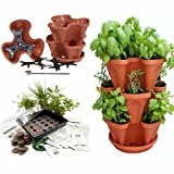 Garden Stacker Planter + Indoor Culinary Herb Garden Kit - Great Gift Idea - Grow Cooking Herbs - Seeds: Cilantro, Basil, Dill, Oregano, Mustard, Mint - Includes TerraCotta Color Stackable Planter