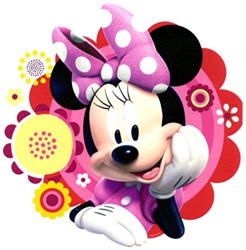 Whimsical Practicality Edible Icing Image for 1/4 Sized Sheet Cake, Minnie Mouse -