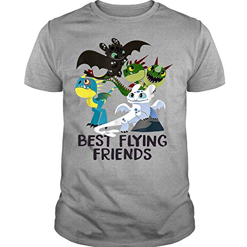 Best Flying Friends T Shirt, How to Train Your Dragon 3 T Shirt (M, Sport Gray)