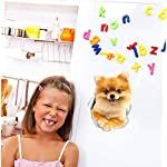 Winston & Bear Cute Pomeranian Dog Wall Decals - 2 Pack - German Spitz Dog Toilet Sticker – 3D Dog Car Window and Bumper Sticker - Retail Packaged Pomeranian Lover Gifts 5