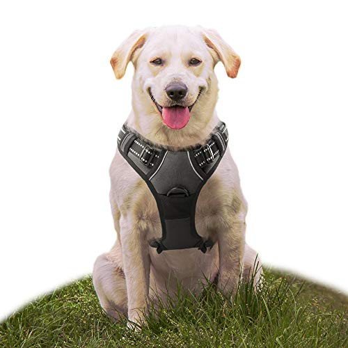 Eagloo No Pull Dog Harness with Front Clip,Walking Pet Harness with 2 Metal Ring and Handle,Reflective Oxford Padded Soft Vest For Small Medium Large Breed (Black, M) ()