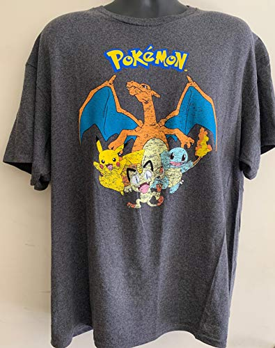 Pokemon T Shirt (Pokemon Group Shot Graphic T-Shirt - Small)