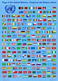 Flags of the United Nations (wall Chart) (flat). 9789210001533
