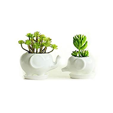 Set of 2 Cute Elephant Flower Pot,Modern White Ceramic Succulent Planter Pots/Tiny Flower Plant Containers (Elephant)