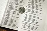 NIV, Value Thinline Bible, Large